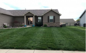 perfectly mowed lawn in illinois